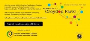 Experience Croydon Park Festival 2016