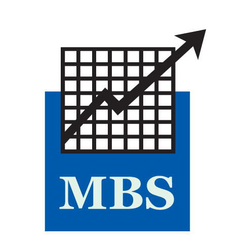 MBS Meguid Business Services